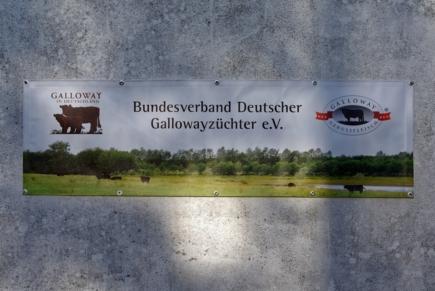 BDG-Banner