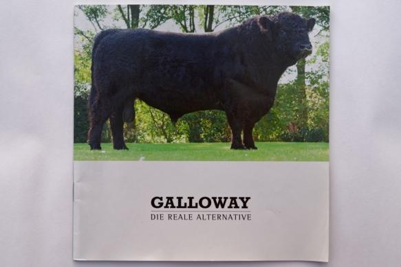 Galloway Vermarktungsbroschüre
