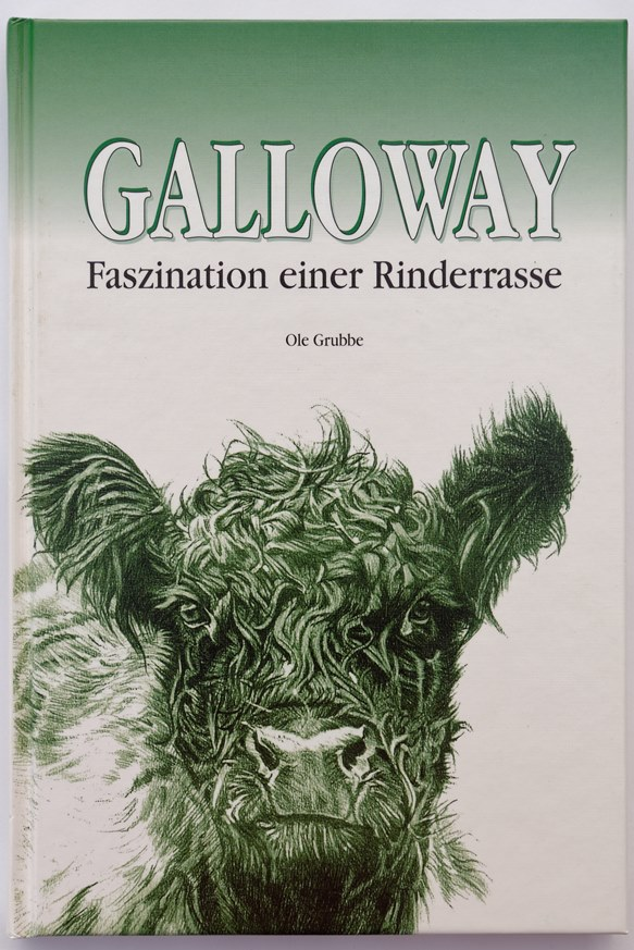 Galloway - Faszination einer Rinderrasse