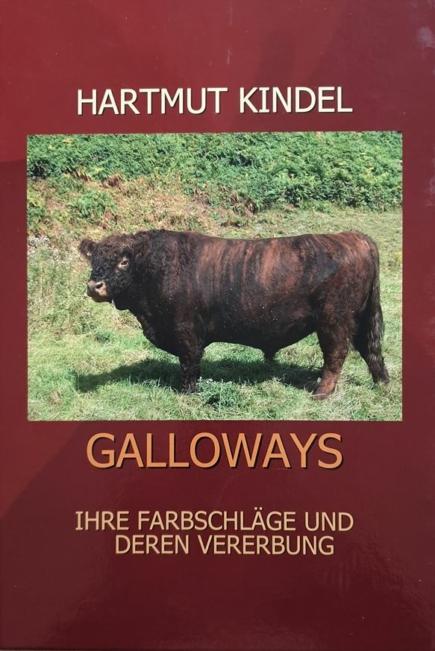 Galloway Farbschläge und Vererbung